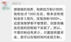 如何300字赚1000元,7天文章收入近15000元?